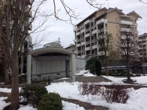 大雪の千葉
