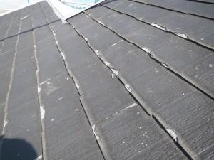 段ボールのような屋根
